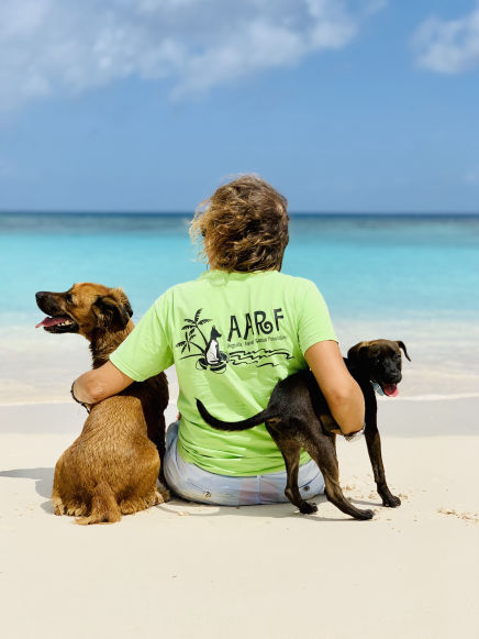 Two Anguilla Dogs on the beach with an AARF volunteer