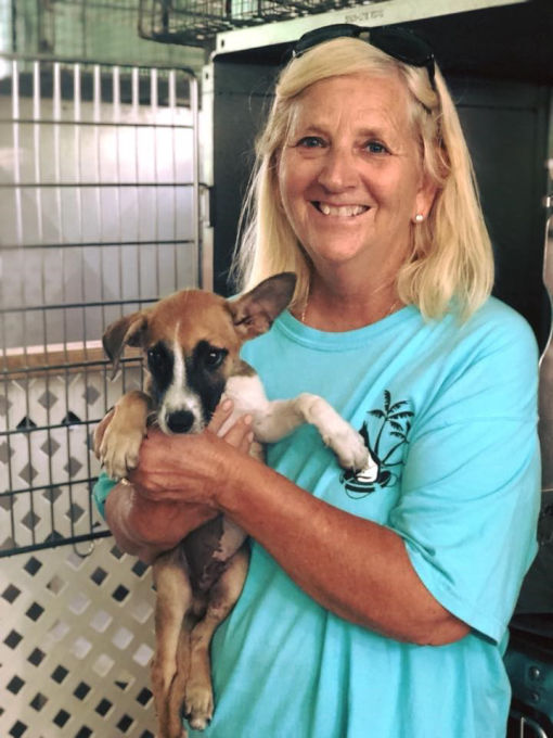 AARF Vice President, Suzie, with a shelter puppy